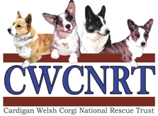 cwcnrt-logo-email